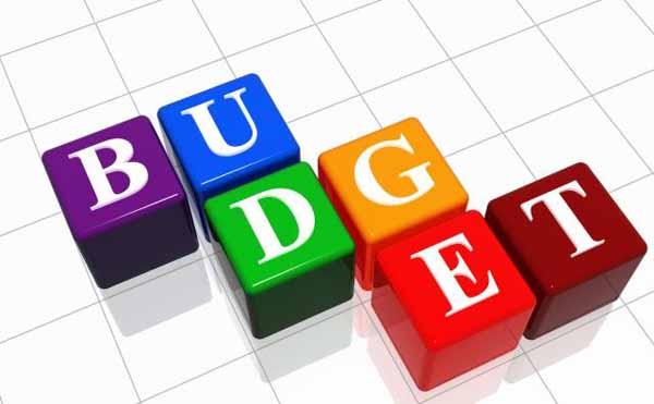Che cos'è il budget?