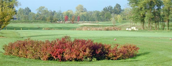 golf club la romanina