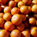 Come vengono prodotti gli agrumi biologici
