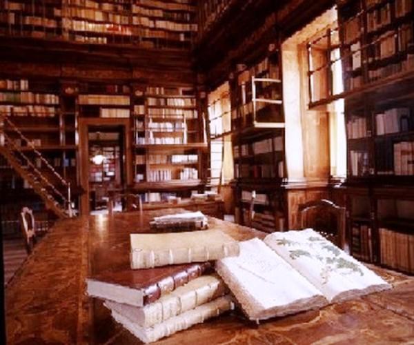 diventare bibliotecario