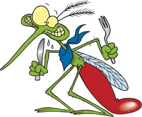 Perch le zanzare pungono pi o meno a seconda della persona for Le zanzare non pungono i malati