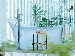 Dove sistemare le piante in bagno - Piante in bagno ...