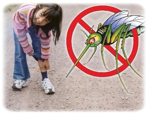 Come si può combattere la zanzara tigre?